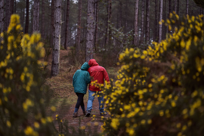 couple having a romatic walk through Llandwyn Island woods in the rain