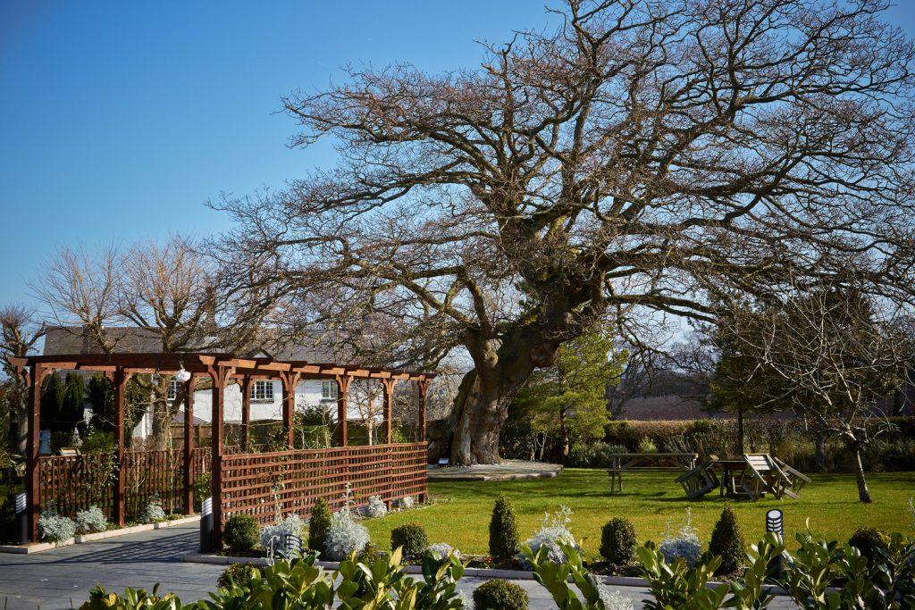 Grounds at Kinmel Manor