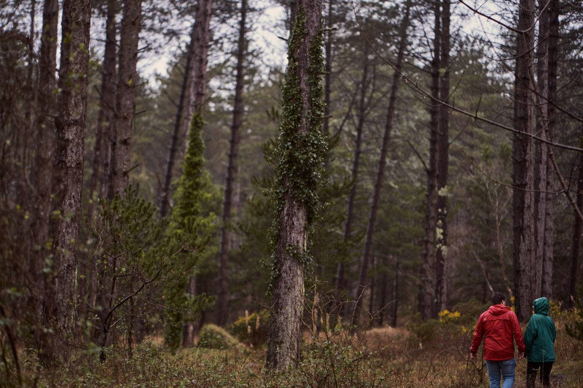 Couple walking through the woods, the girlfriend has no idea her boyfriend is about to propose