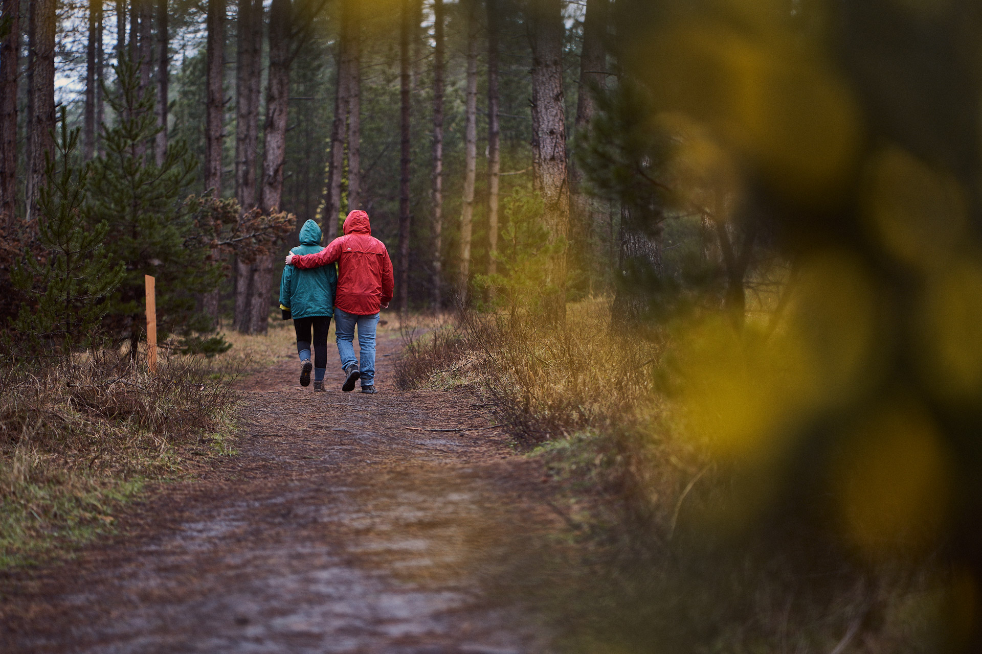 Couple having a romantic walk in the woods
